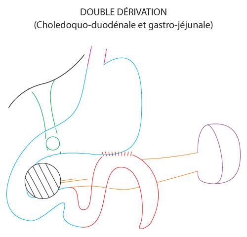shema-double-derivation